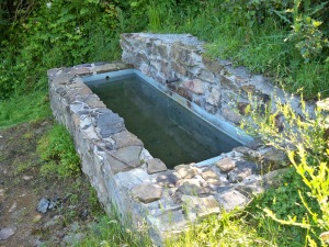 water-trough-373059_1280
